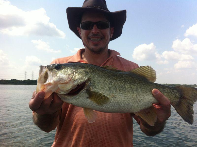 O1 bassman austin for June lake fishing report